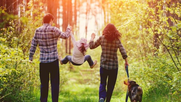 Estrés Familiar 5 Formas De Encontrar La Armonía Entre Padres E